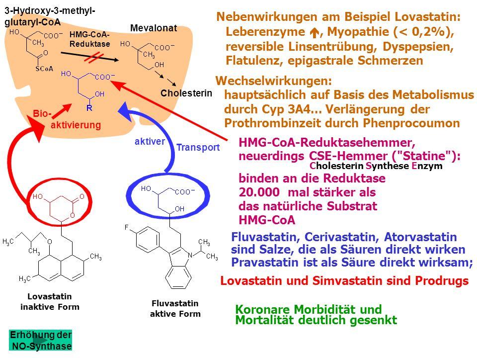 Fluvastatin aktive Form HMG-CoA-Reduktasehemmer, neuerdings CSE-Hemmer ( Statine ): Cholesterin Synthese Enzym binden an die Reduktase 20.000 mal stärker als das natürliche Substrat HMG-CoA Lovastatin und Simvastatin sind Prodrugs Pravastatin ist als Säure direkt wirksam; Fluvastatin, Cerivastatin, Atorvastatin sind Salze, die als Säuren direkt wirken Koronare Morbidität und Mortalität deutlich gesenkt Nebenwirkungen am Beispiel Lovastatin: Leberenzyme, Myopathie (< 0,2%), reversible Linsentrübung, Dyspepsien, Flatulenz, epigastrale Schmerzen Wechselwirkungen: hauptsächlich auf Basis des Metabolismus durch Cyp 3A4...