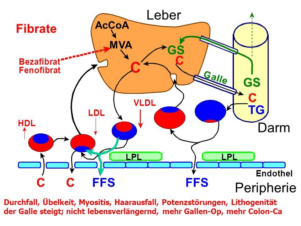 C C TG AcCoA MVA C GS FFSCC Endothel Peripherie Leber Darm Fibrate FFS LPL VLDL LDL HDL Bezafibrat Fenofibrat Durchfall, Übelkeit, Myositis, Haarausfall, Potenzstörungen, Lithogenität der Galle steigt; nicht lebensverlängernd, mehr Gallen-Op, mehr Colon-Ca