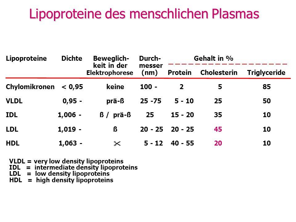 Lipoproteine DichteBeweglich- Durch-Gehalt in % keit in der messer Elektrophorese (nm) ProteinCholesterinTriglyceride Chylomikronen < 0,95keine100 - 2 5 85 VLDL 0,95 -prä-ß25 -75 5 - 1025 50 IDL 1,006 -ß /prä-ß 25 15 - 2035 10 LDL 1,019 - ß20 - 25 45 10 HDL 1,063 - 5 - 12 40 - 5520 10 VLDL = very low density lipoproteins IDL = intermediate density lipoproteins LDL = low density lipoproteins HDL = high density lipoproteins Lipoproteine des menschlichen Plasmas