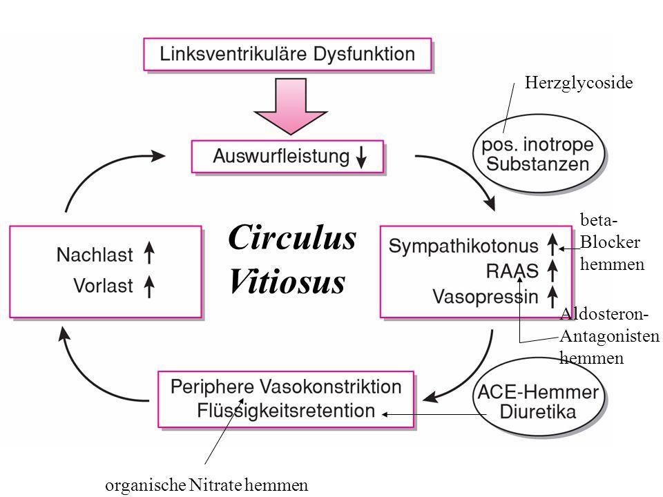 organische Nitrate hemmen beta- Blocker hemmen Herzglycoside Circulus Vitiosus Aldosteron- Antagonisten hemmen
