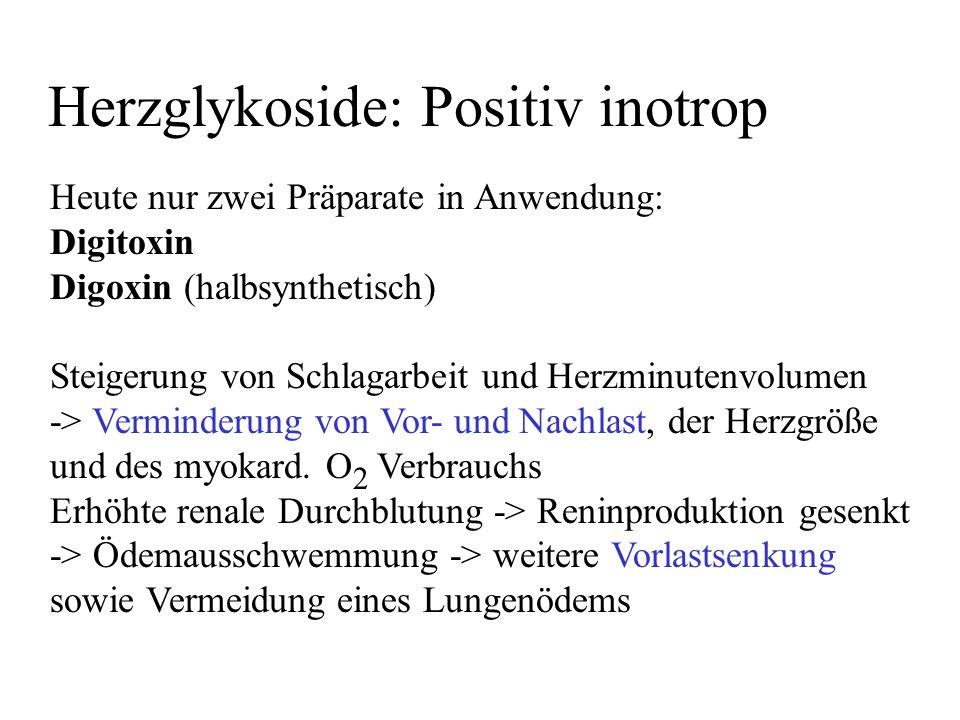 Herzglykoside: Positiv inotrop Heute nur zwei Präparate in Anwendung: Digitoxin Digoxin (halbsynthetisch) Steigerung von Schlagarbeit und Herzminutenv