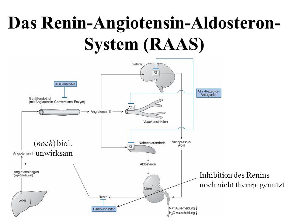 Das Renin-Angiotensin-Aldosteron- System (RAAS) (noch) biol. unwirksam Inhibition des Renins noch nicht therap. genutzt