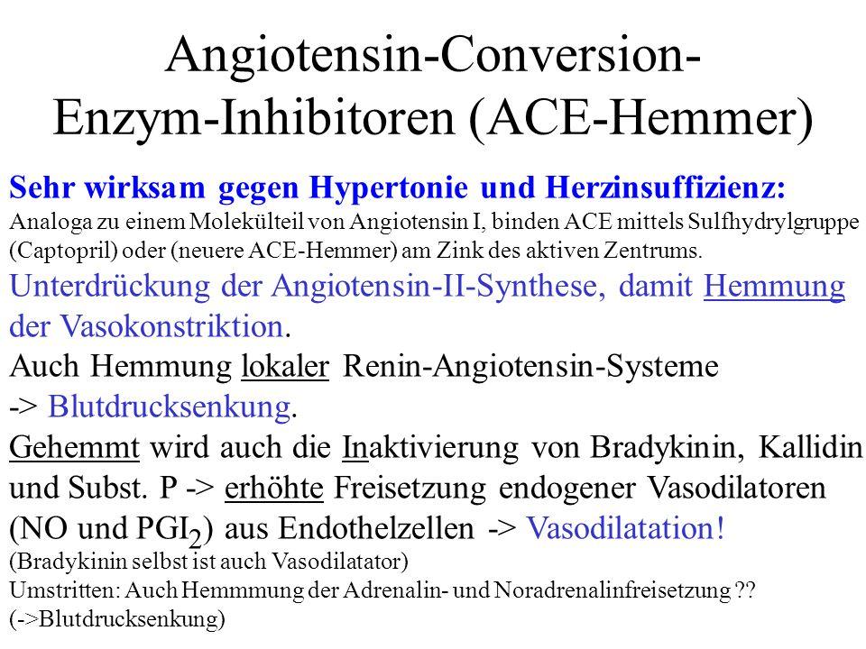 Angiotensin-Conversion- Enzym-Inhibitoren (ACE-Hemmer) Sehr wirksam gegen Hypertonie und Herzinsuffizienz: Analoga zu einem Molekülteil von Angiotensi