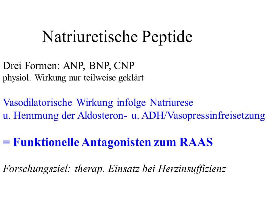 Natriuretische Peptide Drei Formen: ANP, BNP, CNP physiol. Wirkung nur teilweise geklärt Vasodilatorische Wirkung infolge Natriurese u. Hemmung der Al