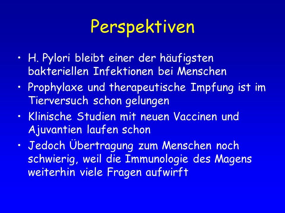 Perspektiven H. Pylori bleibt einer der häufigsten bakteriellen Infektionen bei Menschen Prophylaxe und therapeutische Impfung ist im Tierversuch scho