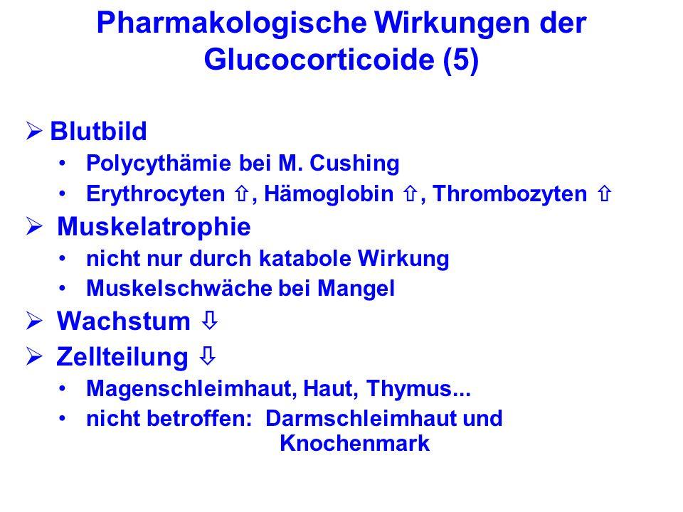 Pharmakologische Wirkungen der Glucocorticoide (5) Blutbild Polycythämie bei M. Cushing Erythrocyten, Hämoglobin, Thrombozyten Muskelatrophie nicht nu