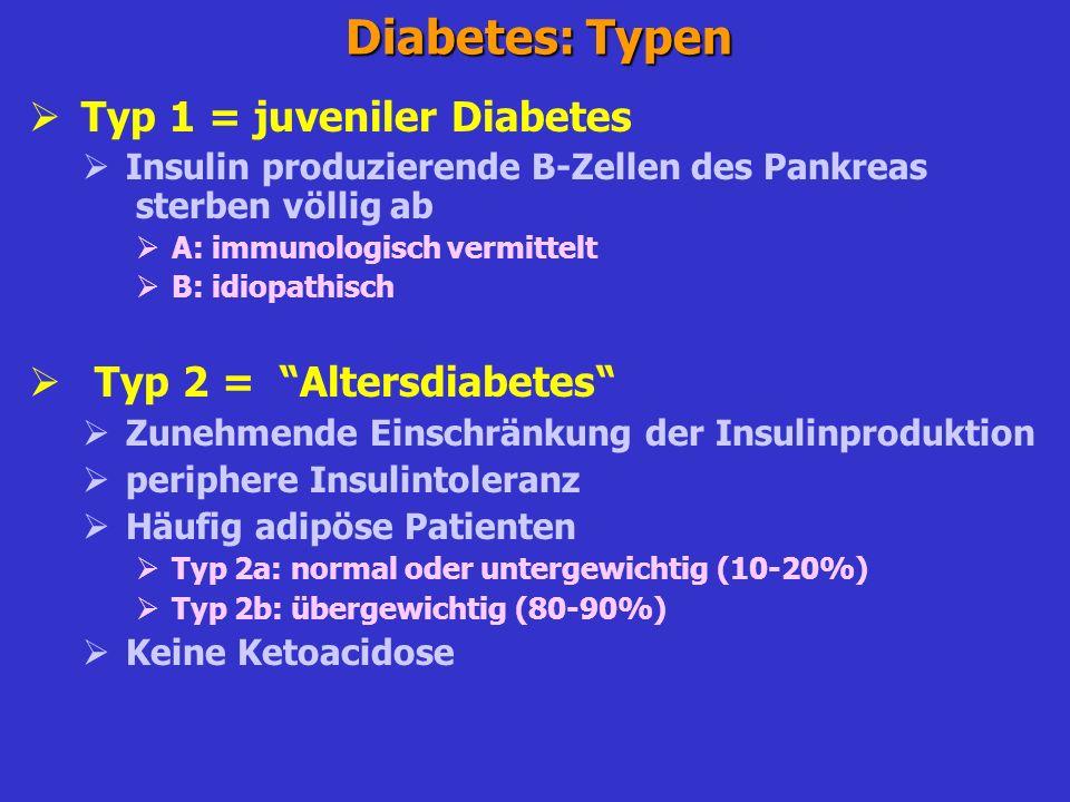 Insulinpräparationen gleichmäßige Blutzuckersenkung über 24 Std.