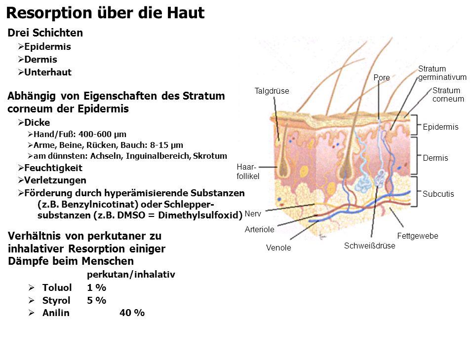 Resorption über die Haut Abhängig von Eigenschaften des Stratum corneum der Epidermis Dicke Hand/Fuß: 400-600 µm Arme, Beine, Rücken, Bauch: 8-15 µm a