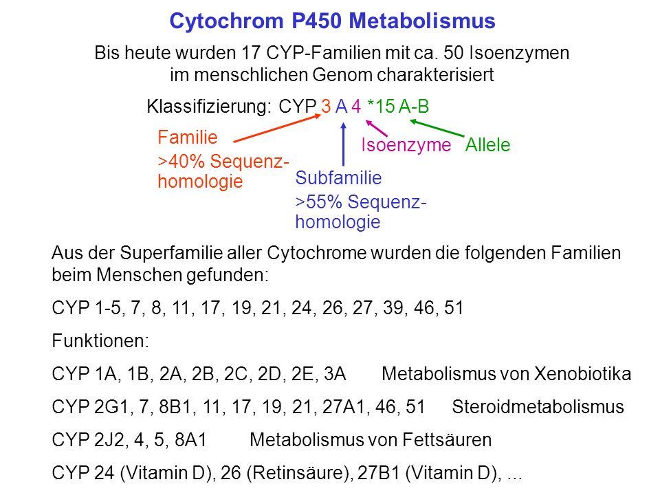 Cytochrom P450 Metabolismus Bis heute wurden 17 CYP-Familien mit ca. 50 Isoenzymen im menschlichen Genom charakterisiert Klassifizierung:CYP 3 A 4 Fam