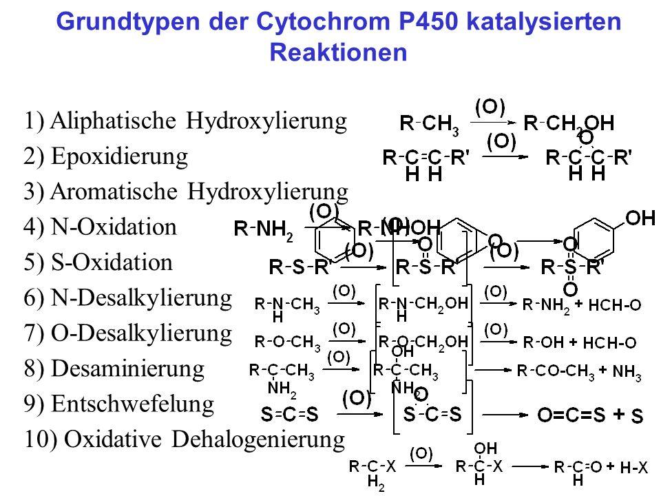 Grundtypen der Cytochrom P450 katalysierten Reaktionen 1) Aliphatische Hydroxylierung 2) Epoxidierung 3) Aromatische Hydroxylierung 5) S-Oxidation 6)