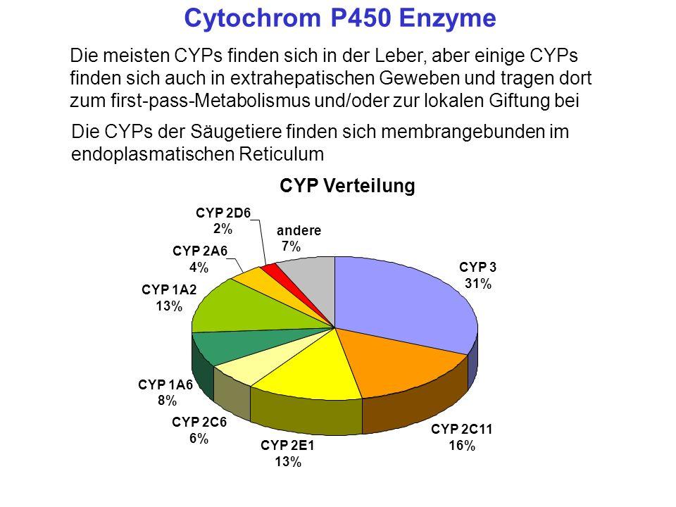 Die meisten CYPs finden sich in der Leber, aber einige CYPs finden sich auch in extrahepatischen Geweben und tragen dort zum first-pass-Metabolismus u