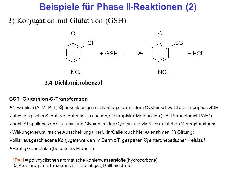 Beispiele für Phase II-Reaktionen (2) 3) Konjugation mit Glutathion (GSH) GST: Glutathion-S-Transferasen 4 Familien (A, M, P, T) beschleunigen die Kon