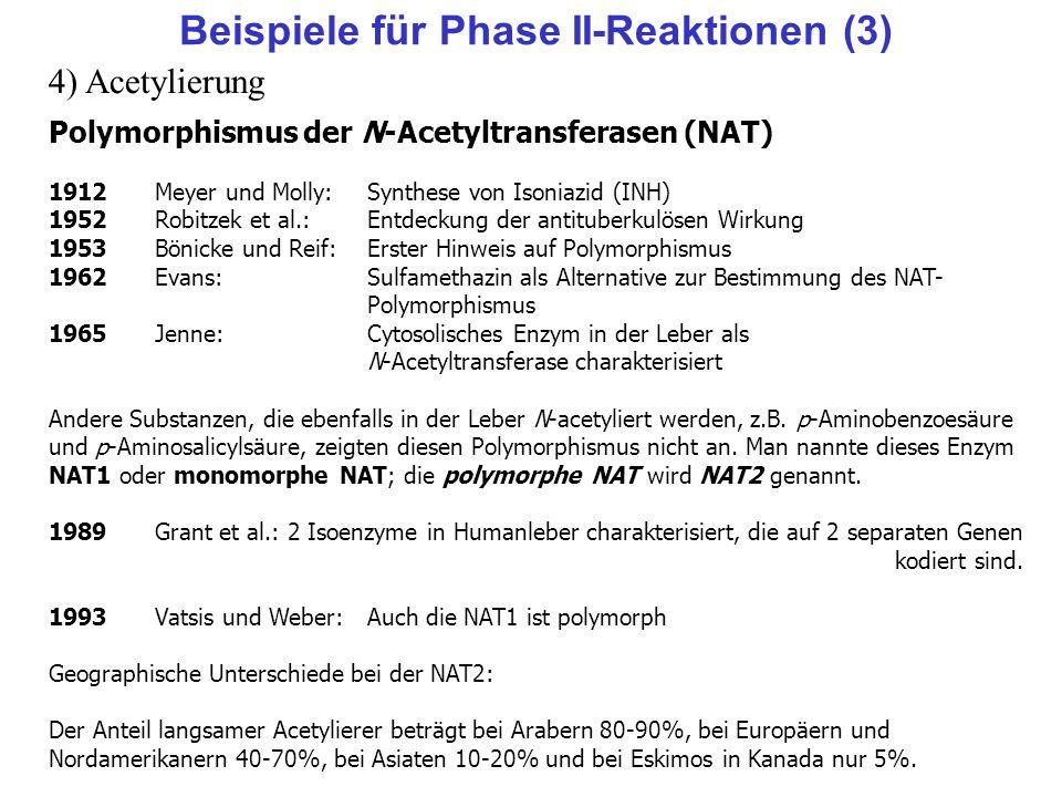 Polymorphismus der N-Acetyltransferasen (NAT) 1912Meyer und Molly:Synthese von Isoniazid (INH) 1952Robitzek et al.:Entdeckung der antituberkulösen Wir