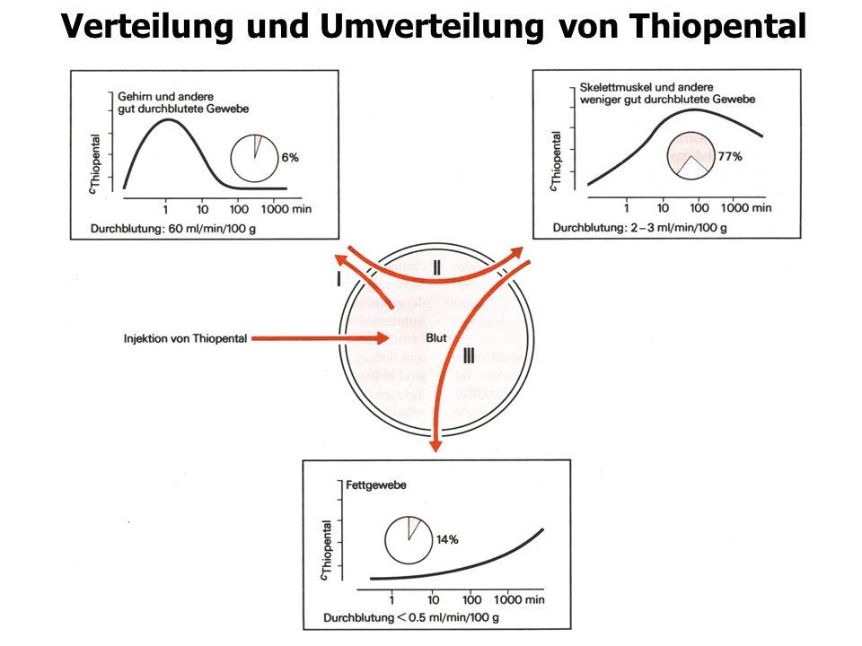 Theophyllin-Clearance (mL/h/kg) 125 50 75 25 0 Früh- und Neugeborene Kleinkinder (0,5-8 Jahre) (>50 Jahre) 100 0 10 20 30 Theophyllin-Erhaltunsdosis (mg/kg/Tag) Erwachsene (<50 Jahre) Änderungen der Pharmakokinetik mit dem Alter Auswirkung auf Clearance und Erhaltungsdosis von Theophyllin