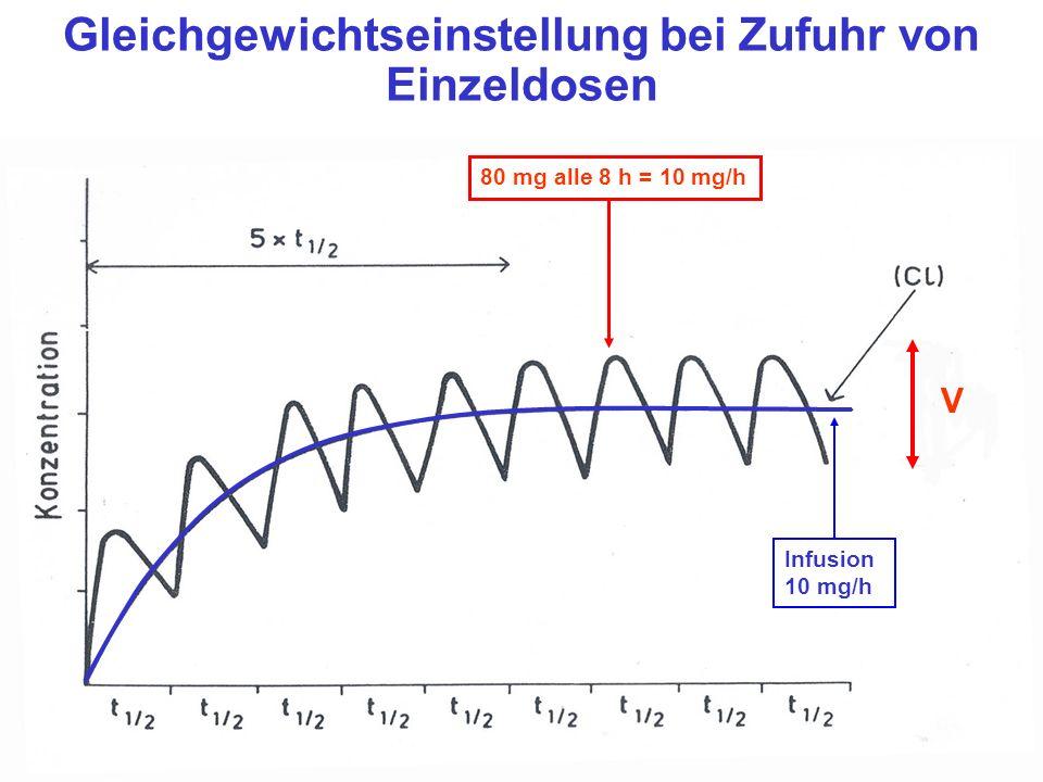 V Gleichgewichtseinstellung bei Zufuhr von Einzeldosen 80 mg alle 8 h = 10 mg/h Infusion 10 mg/h