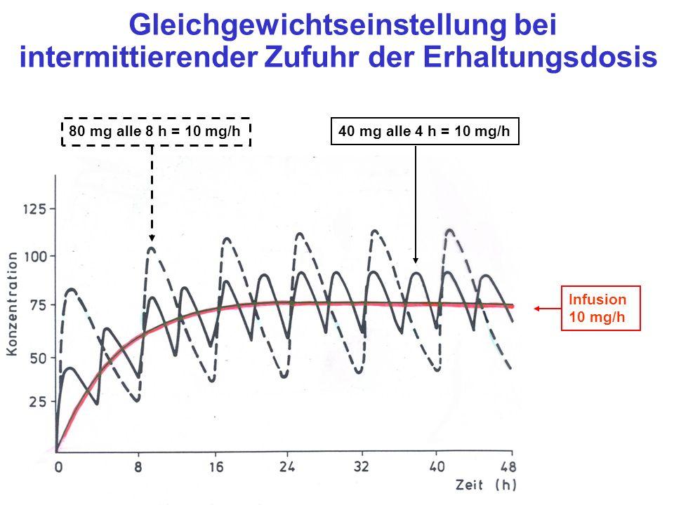 Gleichgewichtseinstellung bei intermittierender Zufuhr der Erhaltungsdosis 80 mg alle 8 h = 10 mg/h 40 mg alle 4 h = 10 mg/h