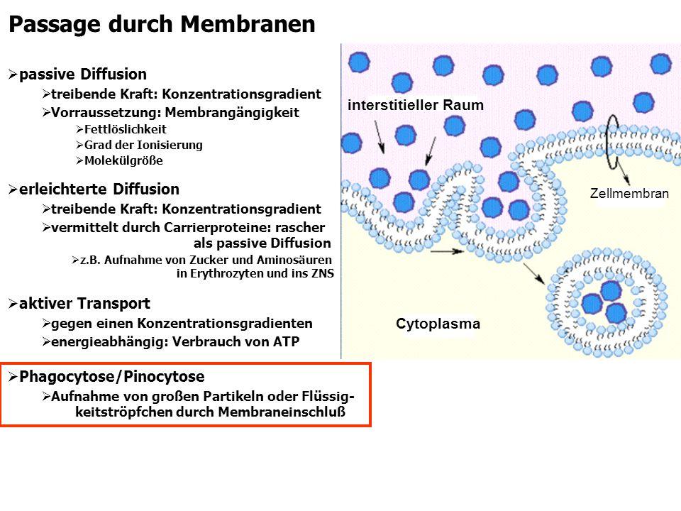 Passage durch Membranen passive Diffusion treibende Kraft: Konzentrationsgradient Vorraussetzung: Membrangängigkeit Fettlöslichkeit Grad der Ionisieru