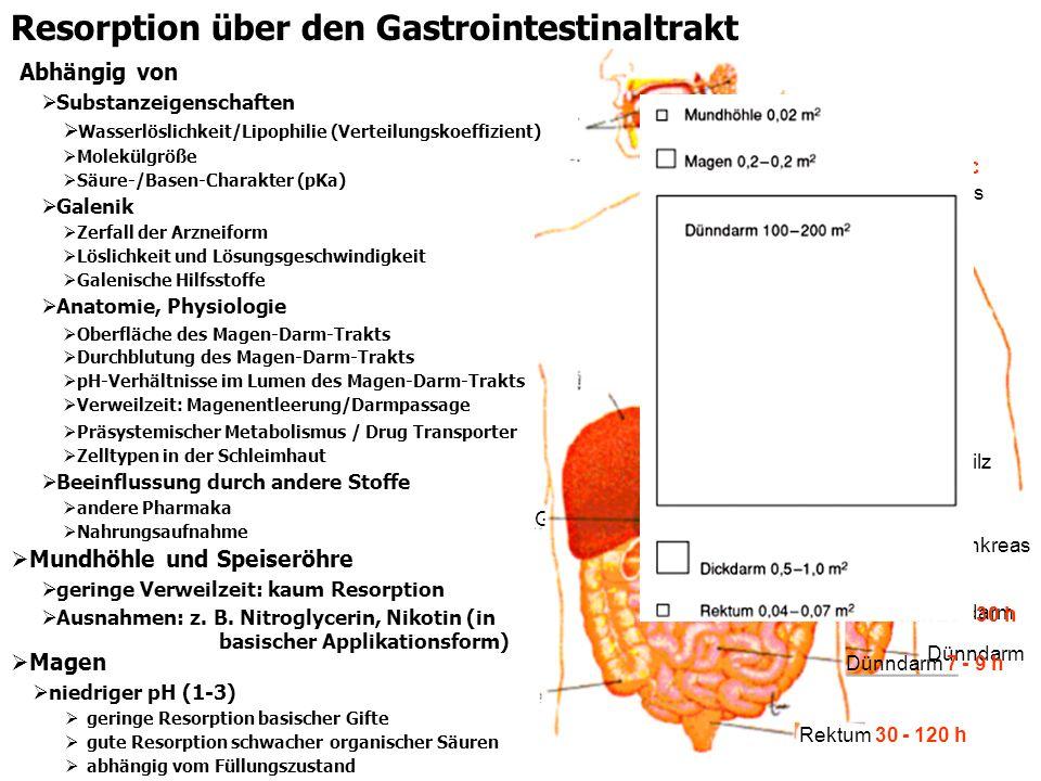 Resorption über den Gastrointestinaltrakt Mundhöhle und Speiseröhre geringe Verweilzeit: kaum Resorption Ausnahmen: z. B. Nitroglycerin, Nikotin (in b