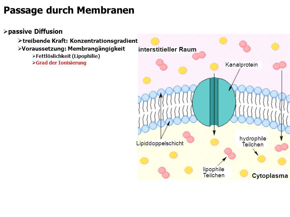 Passage durch Membranen passive Diffusion treibende Kraft: Konzentrationsgradient Voraussetzung: Membrangängigkeit Fettlöslichkeit (Lipophilie) Grad d