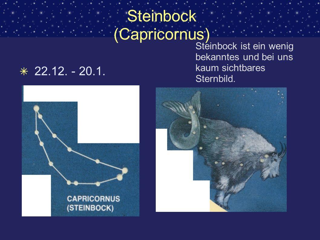 Steinbock (Capricornus) 22.12. - 20.1. Steinbock ist ein wenig bekanntes und bei uns kaum sichtbares Sternbild.