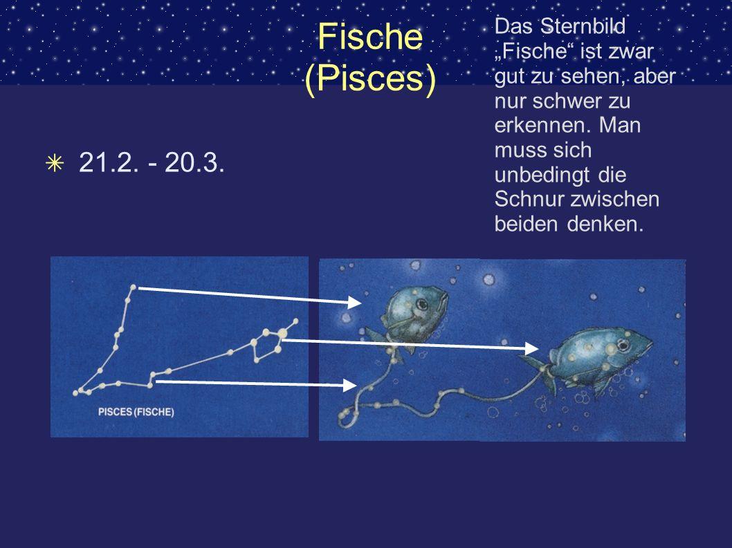 Fische (Pisces) 21.2. - 20.3. Das Sternbild Fische ist zwar gut zu sehen, aber nur schwer zu erkennen. Man muss sich unbedingt die Schnur zwischen bei