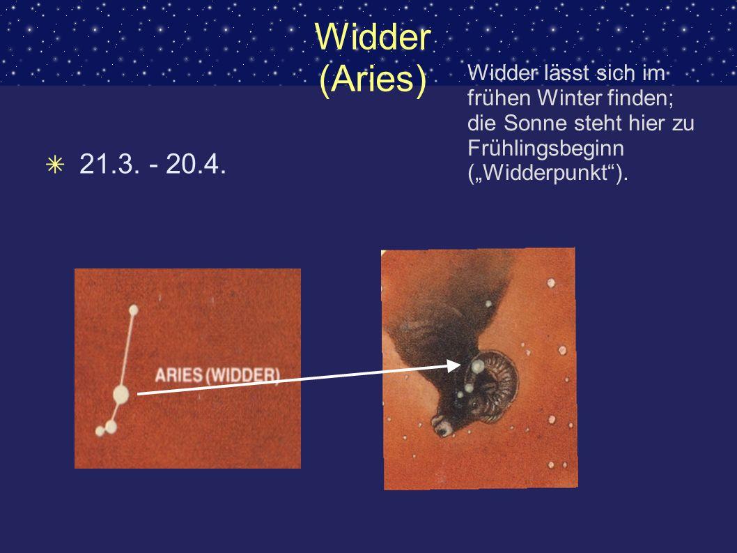 Widder (Aries) 21.3. - 20.4. Widder lässt sich im frühen Winter finden; die Sonne steht hier zu Frühlingsbeginn (Widderpunkt).