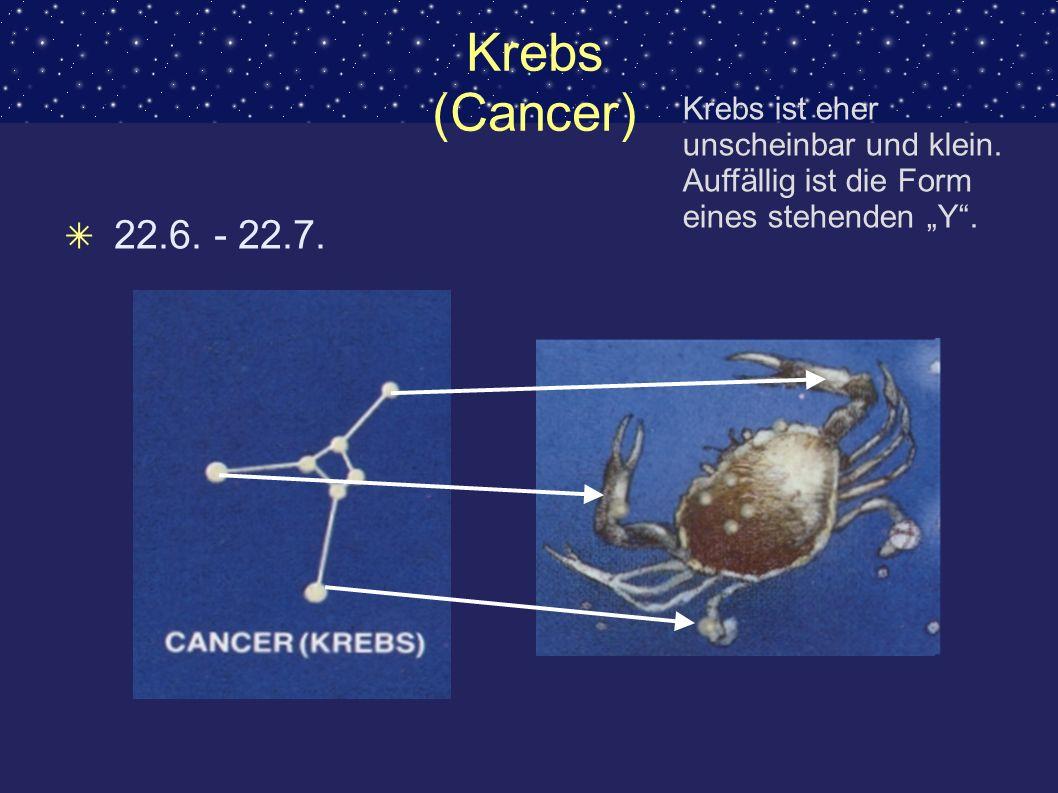 Krebs (Cancer) 22.6. - 22.7. Krebs ist eher unscheinbar und klein. Auffällig ist die Form eines stehenden Y.