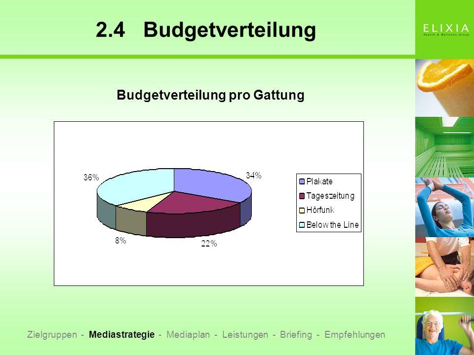 2.4Budgetverteilung Zielgruppen - Mediastrategie - Mediaplan - Leistungen - Briefing - Empfehlungen Budgetverteilung pro Gattung