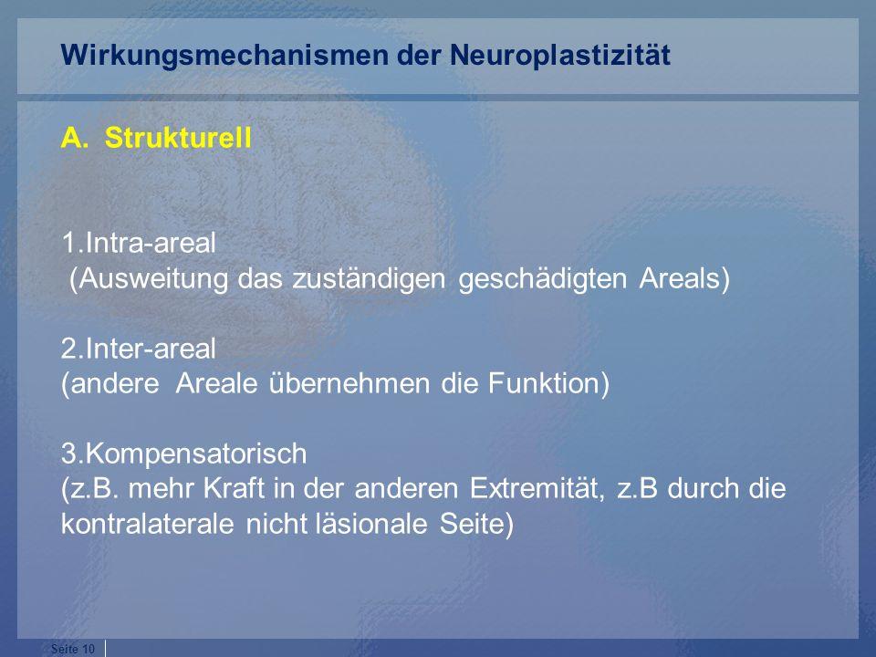 Seite 10 A.Strukturell 1.Intra-areal (Ausweitung das zuständigen geschädigten Areals) 2.Inter-areal (andere Areale übernehmen die Funktion) 3.Kompensatorisch (z.B.