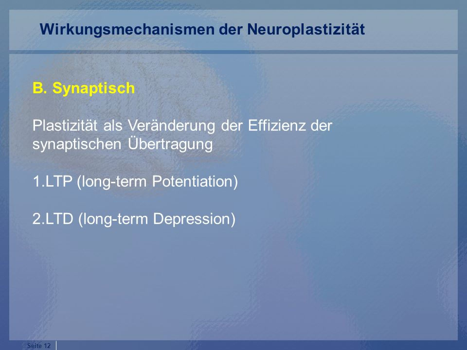 Seite 12 B. Synaptisch Plastizität als Veränderung der Effizienz der synaptischen Übertragung 1.LTP (long-term Potentiation) 2.LTD (long-term Depressi