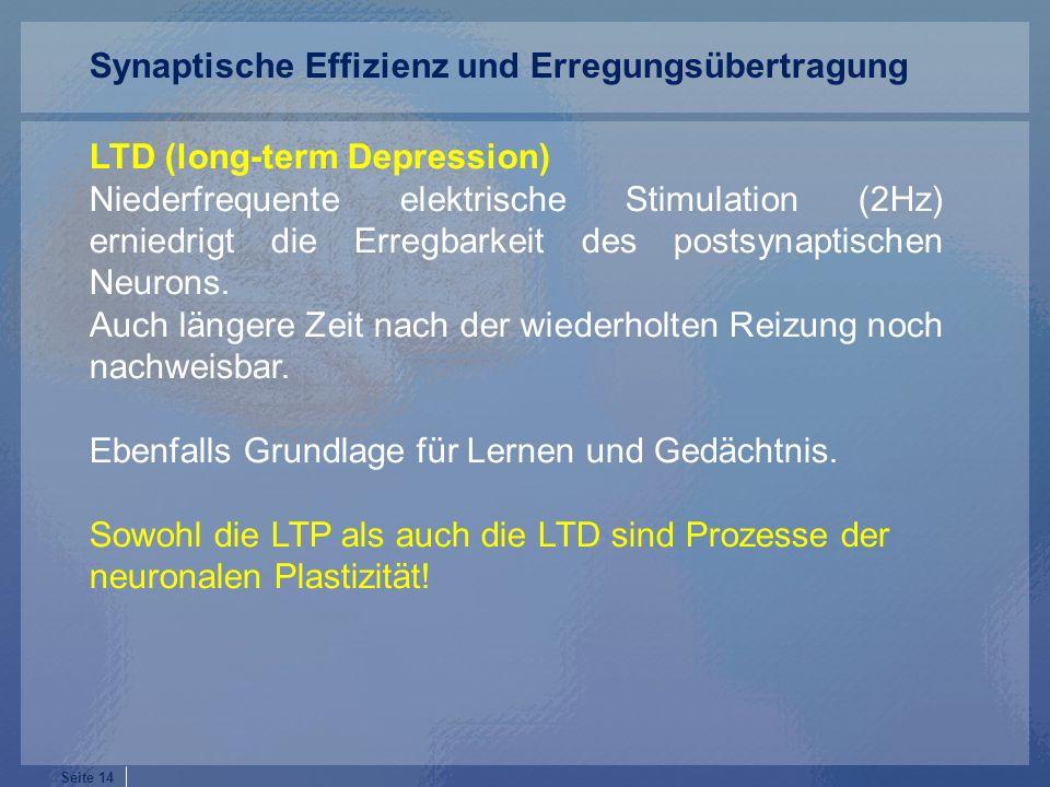 Seite 14 LTD (long-term Depression) Niederfrequente elektrische Stimulation (2Hz) erniedrigt die Erregbarkeit des postsynaptischen Neurons.