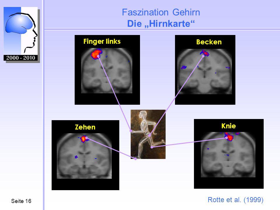 Seite17 Hirnforschung wird immer alltagsnäher Effekte eines Blickkontaktes im Gehirn