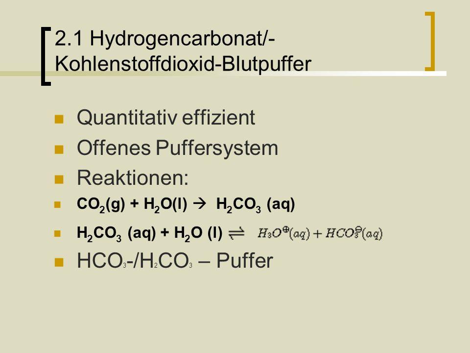 2.2 Hydrogencarbonat/- Kohlenstoffdioxid-Blutpuffer HCO 3 - konz.
