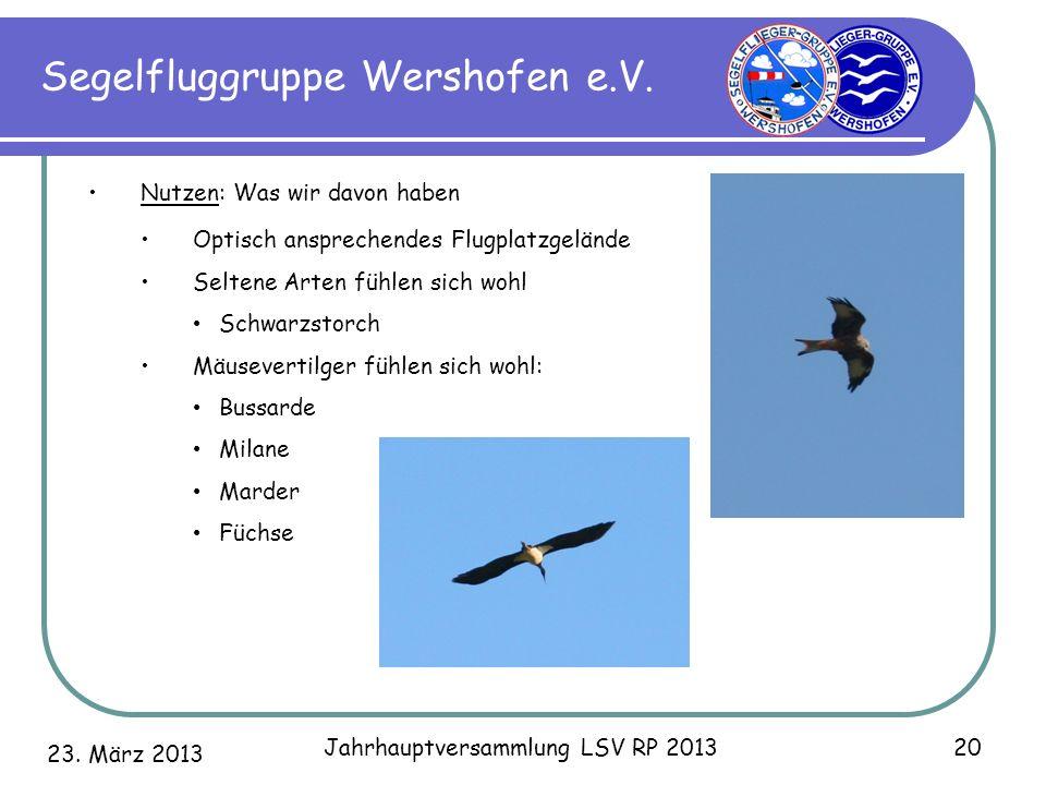 23. März 2013 Jahrhauptversammlung LSV RP 2013 20 Segelfluggruppe Wershofen e.V. Nutzen: Was wir davon haben Optisch ansprechendes Flugplatzgelände Se