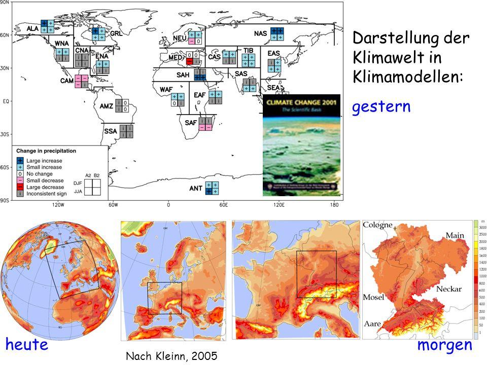 Darstellung der Klimawelt in Klimamodellen: gestern morgenheute Nach Kleinn, 2005