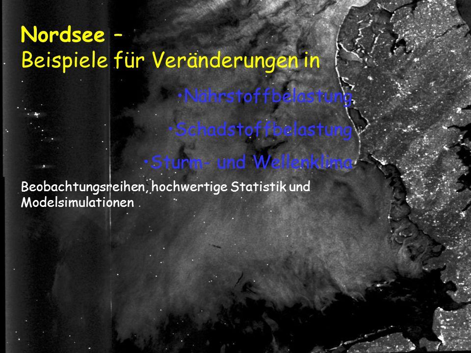 Nordsee – Beispiele für Veränderungen in Beobachtungsreihen, hochwertige Statistik und Modelsimulationen Nährstoffbelastung Schadstoffbelastung Sturm- und Wellenklima