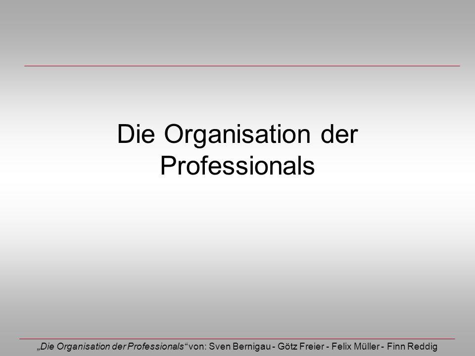 Die Organisation der Professionals von: Sven Bernigau - Götz Freier - Felix Müller - Finn Reddig Die Organisation der Professionals