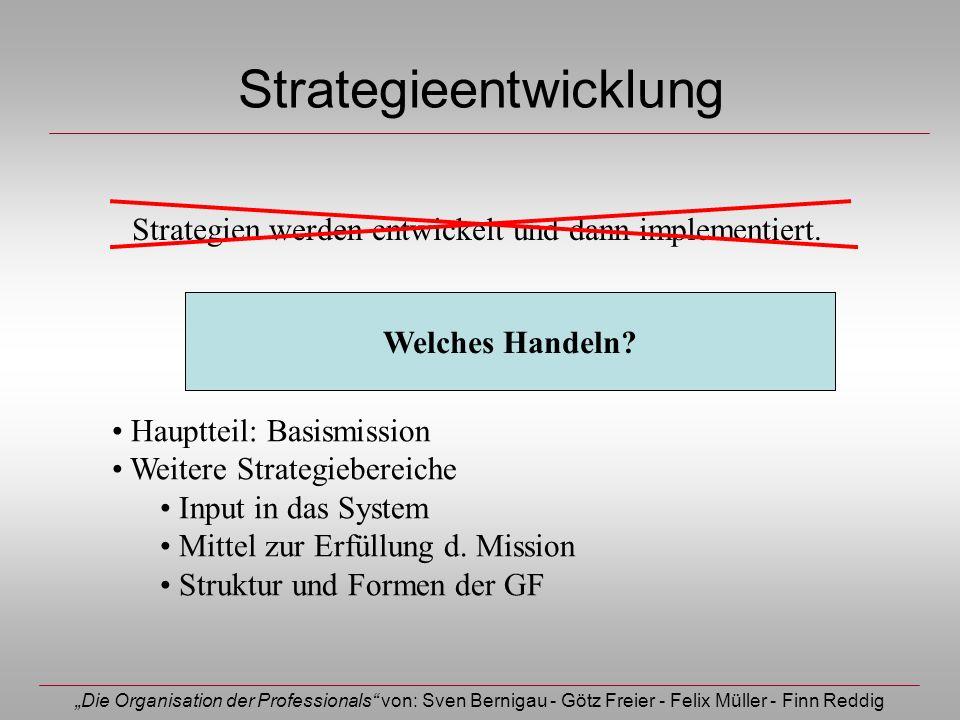 Die Organisation der Professionals von: Sven Bernigau - Götz Freier - Felix Müller - Finn Reddig Strategieentwicklung Strategien werden entwickelt und