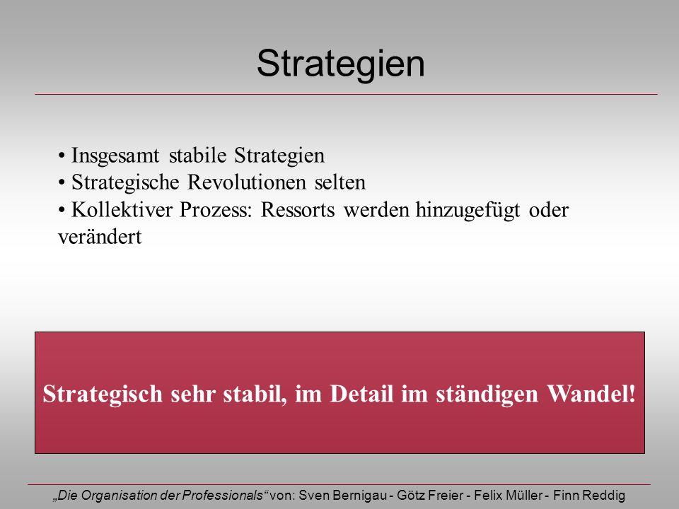 Die Organisation der Professionals von: Sven Bernigau - Götz Freier - Felix Müller - Finn Reddig Strategien Insgesamt stabile Strategien Strategische