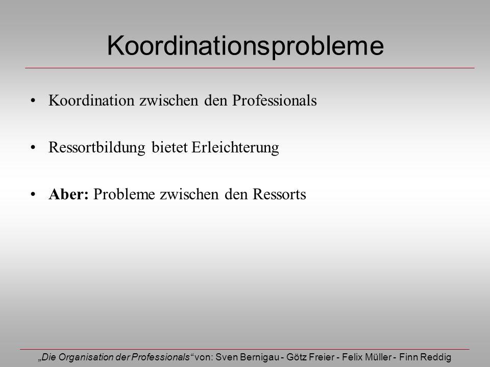 Die Organisation der Professionals von: Sven Bernigau - Götz Freier - Felix Müller - Finn Reddig Koordinationsprobleme Koordination zwischen den Profe