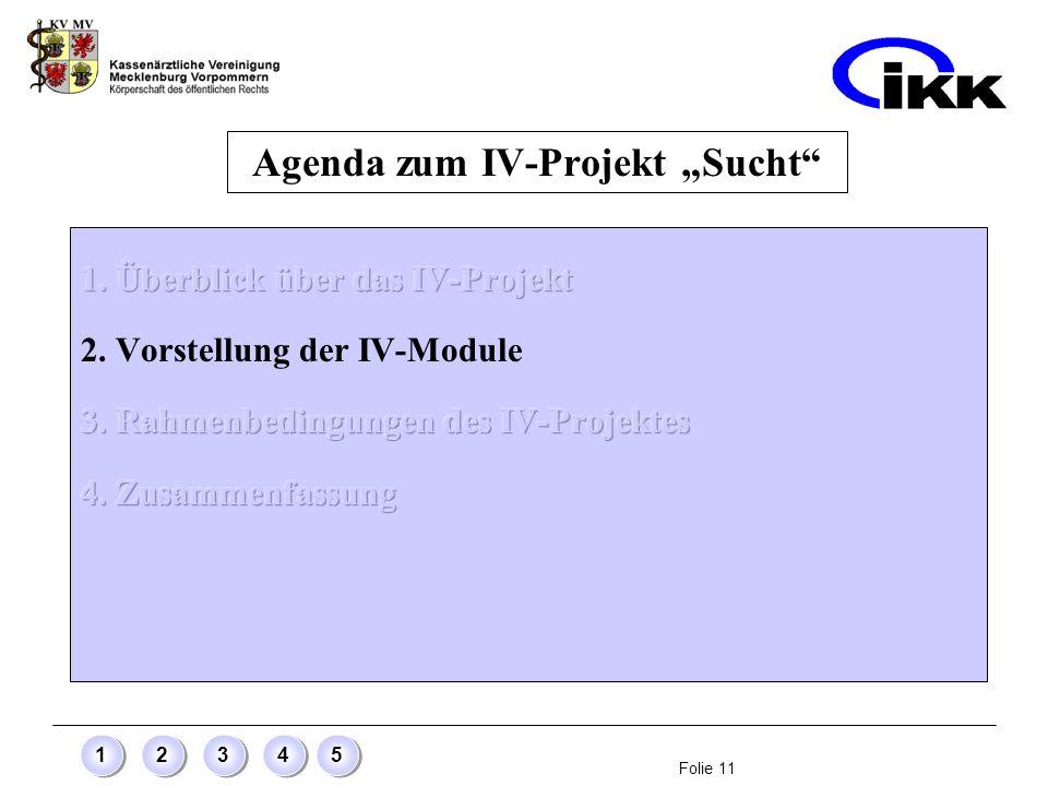 Folie 11 12345 Agenda zum IV-Projekt Sucht