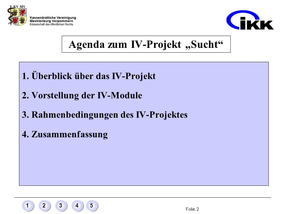 Folie 2 12345 Agenda zum IV-Projekt Sucht 1. Überblick über das IV-Projekt 2. Vorstellung der IV-Module 3. Rahmenbedingungen des IV-Projektes 4. Zusam