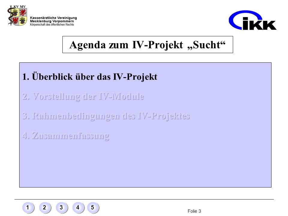 Folie 3 12345 Agenda zum IV-Projekt Sucht