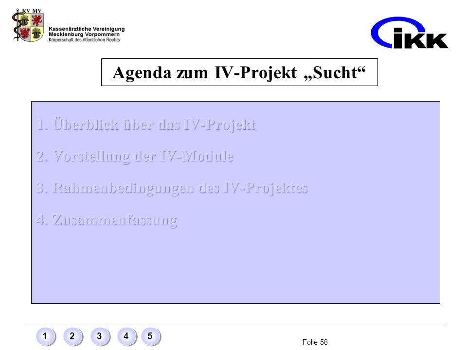 Folie 58 12345 Agenda zum IV-Projekt Sucht