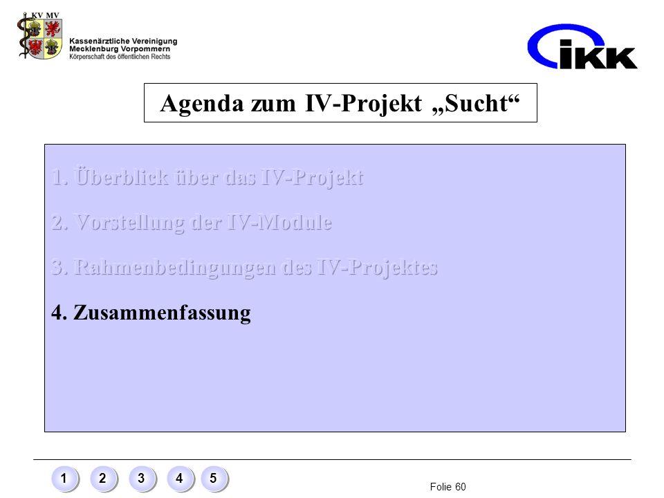 Folie 60 12345 Agenda zum IV-Projekt Sucht