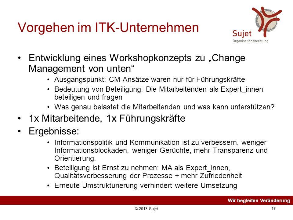 Wir begleiten Veränderung © 2013 Sujet17 Vorgehen im ITK-Unternehmen Entwicklung eines Workshopkonzepts zu Change Management von unten Ausgangspunkt: