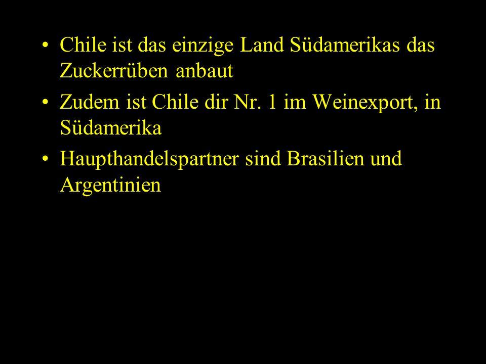Chile ist das einzige Land Südamerikas das Zuckerrüben anbaut Zudem ist Chile dir Nr.