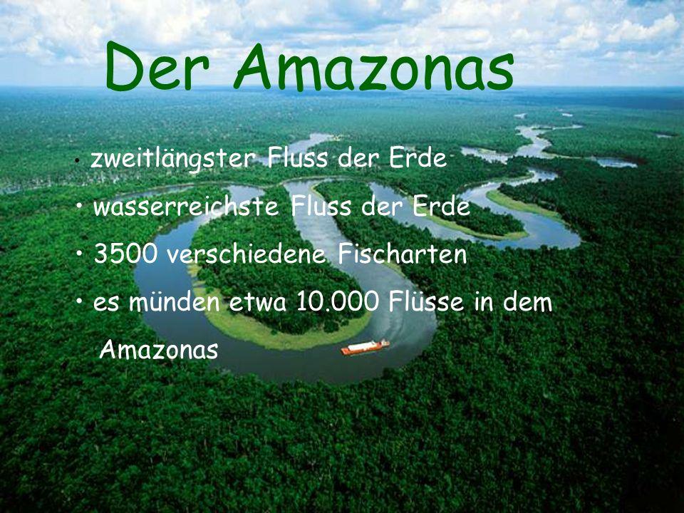 Der Amazonas zweitlängster Fluss der Erde wasserreichste Fluss der Erde 3500 verschiedene Fischarten es münden etwa 10.000 Flüsse in dem Amazonas