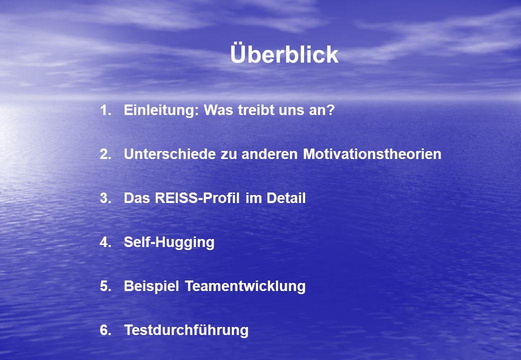 Überblick 1.Einleitung: Was treibt uns an? 2.Unterschiede zu anderen Motivationstheorien 3.Das REISS-Profil im Detail 4.Self-Hugging 5.Beispiel Teamen