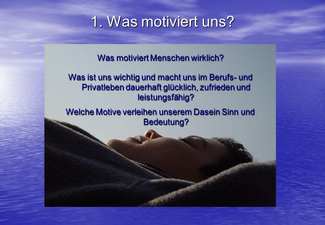1. Was motiviert uns? Was motiviert Menschen wirklich? Was ist uns wichtig und macht uns im Berufs- und Privatleben dauerhaft glücklich, zufrieden und